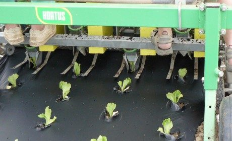 soluzioni per l'agricoltura.007