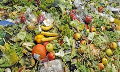 Supermarkets close to agreement on common food waste reporting