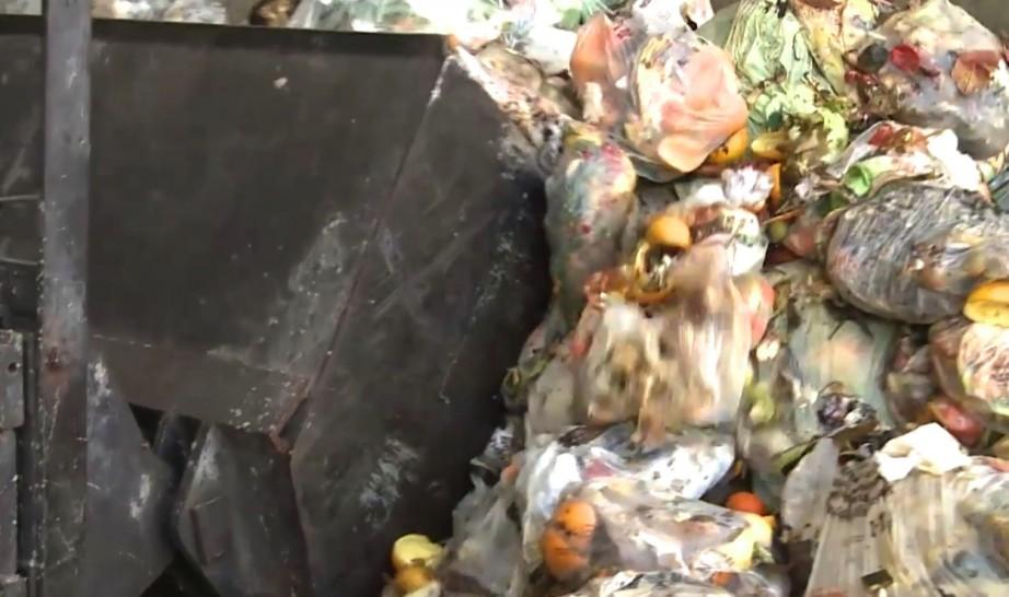 las-bolsas-compostables-clave-para-un-compost-de-calidad_pallars-sobira-un-caso-de-exito