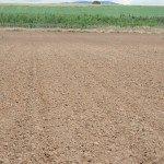 soluzioni per l'agricoltura.003