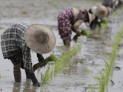 Clima e cibo, dall'industria alimentare il 25% delle emissioni di gas serra