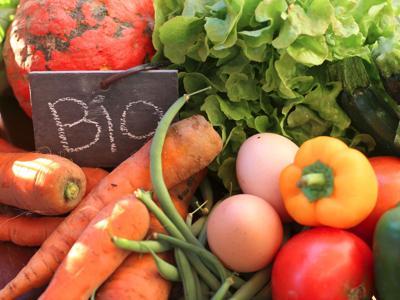 Più bio e packaging green, il cibo sostenibile nel 2017
