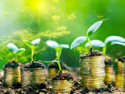 Dalle divise agli arredi, nuovi criteri ambientali per gli acquisti della Pa