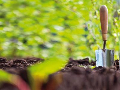 Orti in azienda e agricoltura urbana, nasce Città d'Orti