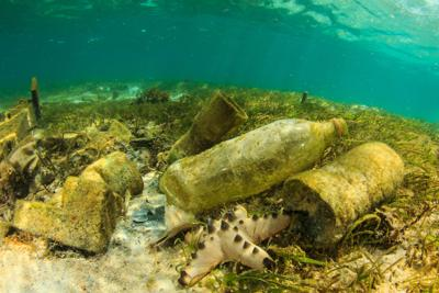 Marine litter, sconfiggiamolo con l'economia circolare
