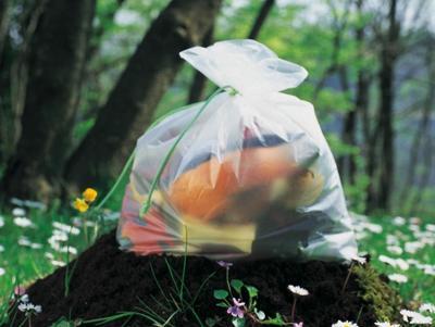 Dalla differenziata alla legalità, ecco il piano di Roma sui rifiuti organici