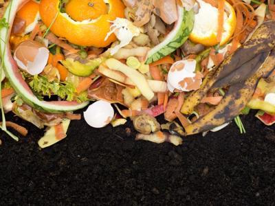 Biowaste di qualità, al via le iscrizioni al premio 'Il Comune più organico'