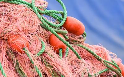 Allarme Mediterraneo, fino a 5 kg di frammenti plastici nello stomaco dei tonni