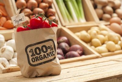 Dall'Italia all'Australia, le mete del gusto sostenibile