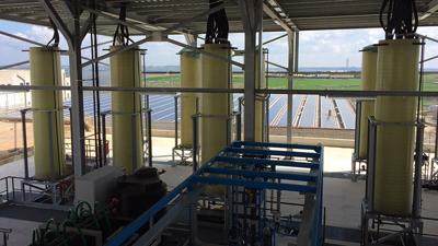 Alghe, luce solare e Co2: così Eni produrrà bio-carburante