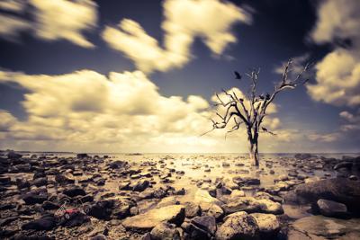 Troppa poca acqua per mezzo miliardo di persone nel mondo