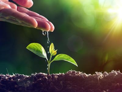 Biogasfattobene: così l'azienda agricola diventa carbon negative