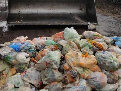 Plastica nell'organico, Paesi Ue a confronto
