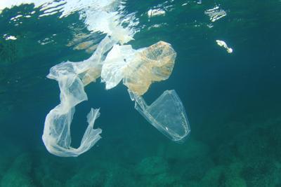 Plastica in mare, invasi anche i fondali