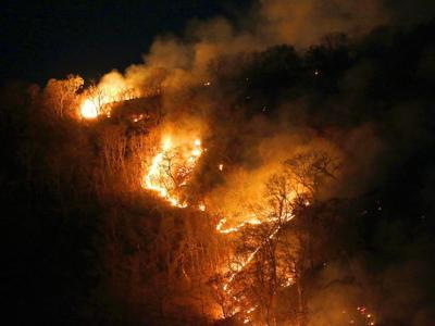 """Amazzonia, """"da incendi effetti su qualità dell'aria e clima"""""""