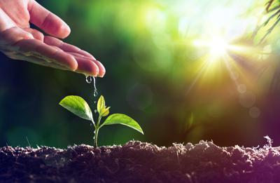 Sos suolo, non è rinnovabile e lo stiamo perdendo. Nasce la fondazione Re Soil