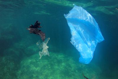 Negli oceani 10 mln di ton l'anno di plastica. Potrebbero diventare petrolio e gas