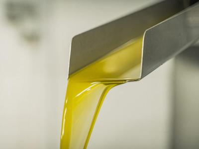 RenOils, nel 2019 raccolte oltre 44mila t di oli alimentari (+25%)